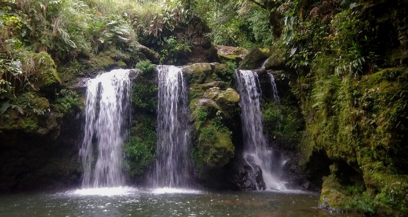 jungle scene with a short waterfall falling in three parts over a rocky ledge